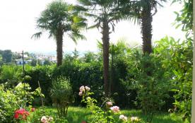 Le jardin et ses palmiers, les montagnes au loin