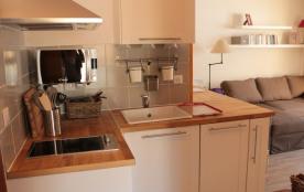 Coin cuisine tout équipé: micro-onde, lave-vaisselle, hotte, plaques électriques