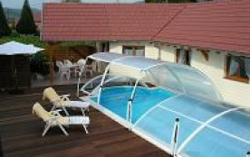 Gite du vignoble d'Alsace 4 * * * * piscine +sauna - Gertwiller