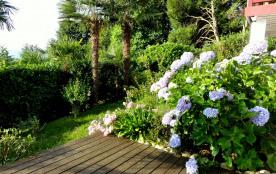 Terrasse et hortensias