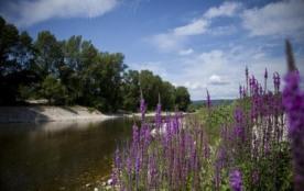 10 hectares de nature authentique en plein coeur des Cévennes!