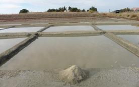 le dernier mini tas de sel en fin de saison dans les marais salants