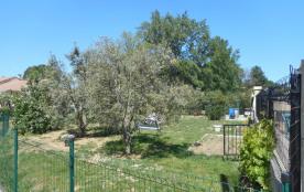 Côté jardin avec ombrage sous les oliviers