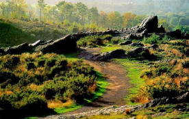 L'histoire des légendes et contes de Brocéliande
