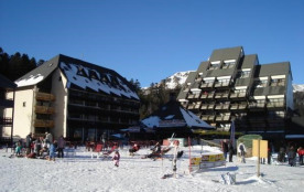 Appartement 2 pièces de bon standing avec vue sur les pistes de ski et la forêt