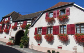 """GITE centre Alsace """"le Rossignol"""""""