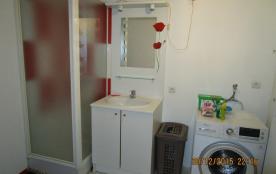 salle de bain 1 douche + lave linge + table à repasser+ fer à repasser