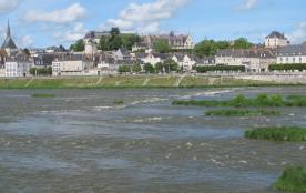 La Loire le Chateau de blois