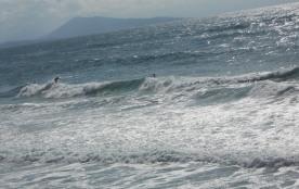 surfeurs face à la plage