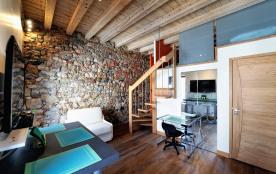 LE CYGNE, studio  loft classé 3 étoiles