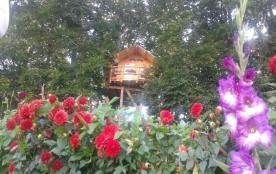 Insolite- Cabane dans les arbres à l'intérieur d'un parc a Cervidé.