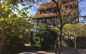 Gite Le jardin 4 à 5 pers dans belle maison alsacienne sur la route des vins. - Dambach la Ville