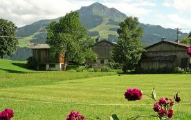 Maison pour 8 personnes à Sankt Johann in Tirol