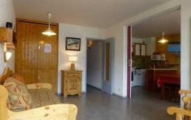 Appartement 2 pièces coin montagne 9 personnes (4628)