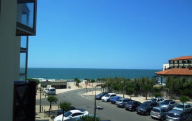 Dans résidence avec piscine, en bordure de plage, agréable appartement T2 avec terrasse offrant v...