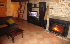 salon + cheminée