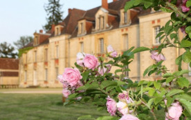 Passez un séjour inoubliable, dans l'une de nos chambres d'hôtes de prestige (Bibracte ou Tulipie...