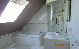 salle de bain 1 baignoire 1 douche + seche cheveux