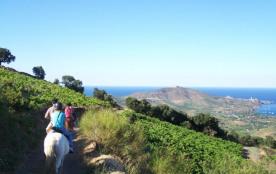 Résidence le Village des Aloes 3*-Bora Bora-