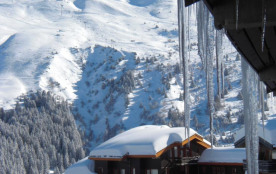 Location appartement meribel mottaret