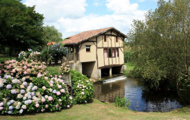 Moulin atypique au-dessus ruisseau et au calme