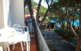 Appartement 2/4 pers proche plage