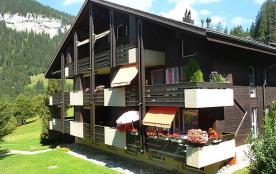 Appartement pour 4 personnes à Beatenberg