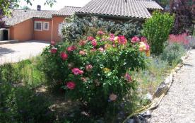 Le jardin et ses rosiers
