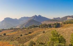 Gite en Provence dans les Dentelles de Montmirail - Suzette