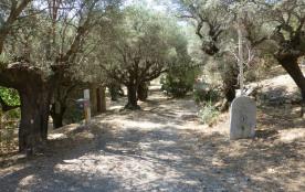 Chemin d'accès (entrée du domaine)