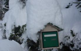 Boite aux lettres en hiver !!