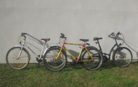 Les vélos adultes
