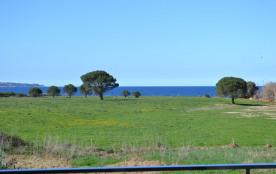 saint florent haute corse T2 neuf plages à pieds 5 minutes