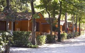 Camping Torre Del Lago