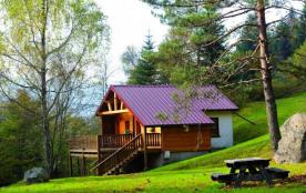 Chalet traditionnel 4 à 5 personnes, pleine nature, cosy, raffiné, terrasse avec barbecue, très c...