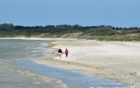 beau rez de jardin face a la mer pou vos vacances