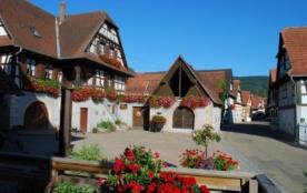 """Grand Gite Rural en Alsace avec piscine """" Vignoble de Cléebourg"""" - Cleebourg"""