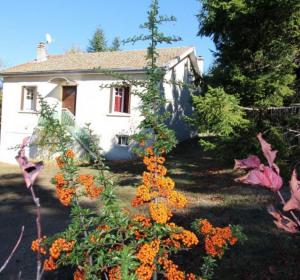 location vacances gite le lac-d'issarlès