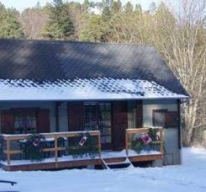 location vacances chalet Murol