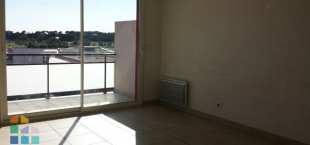 location appartement t3 jacou