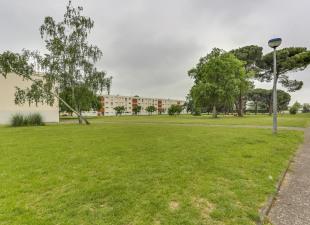 Location Appartement Mont De Marsan 40