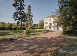 Vente maison et villa de luxe Vienne (38)   acheter maisons et ... a094fb1bc446