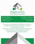 logo Efficity - paris 16 - brigitte zana