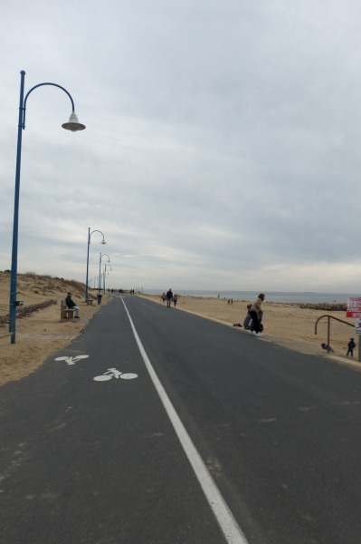 piste cyclabe bord  de mer et forêt