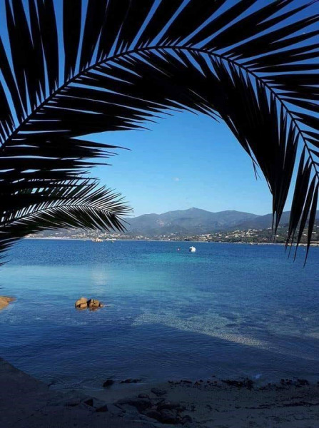 Alquileres de vacaciones Ajaccio - Apartamento - 4 personas - Silla de cubierta - Foto N° 1