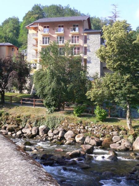 Située au coeur des Pyrénées Ariégeoises et de la région Midi-Pyrénées, Ax présente une situation géographique privil...
