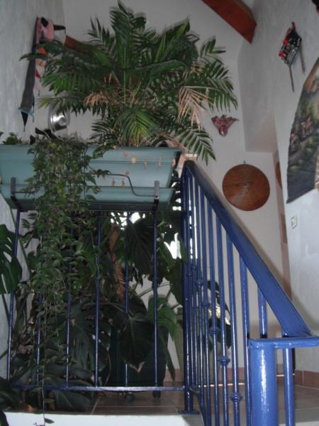 chambres bord de mer, dans villa avec piscine