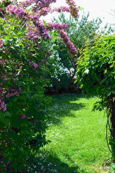 entrée du jardin