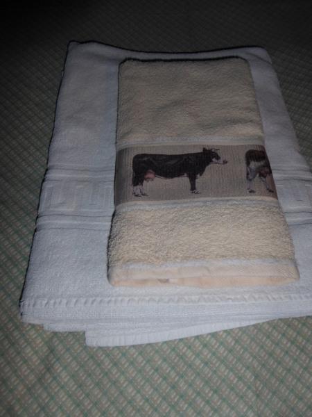 Draps et serviettes fournis