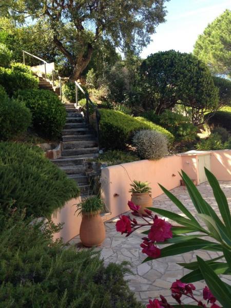 la terrasse et le jardin en restanques